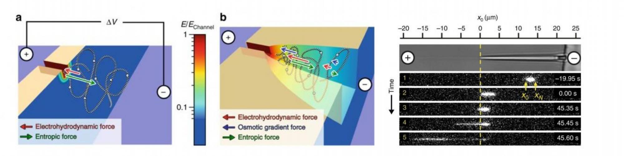 three-dimensional nanofunnels